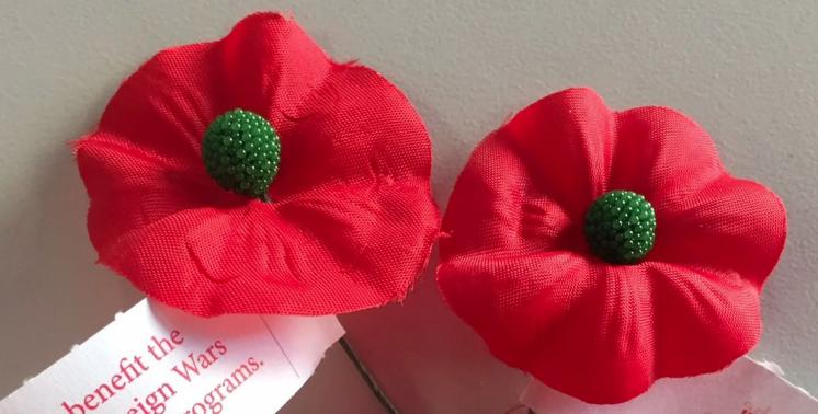 Memorial Day poppy.PNG